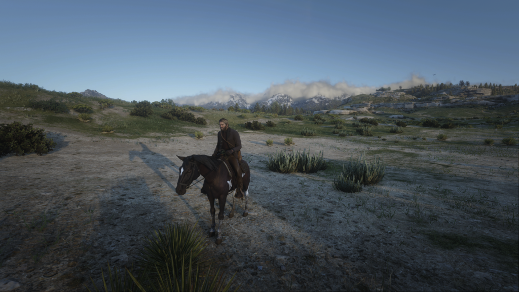 Read Dead Redemption Screenshot using photo mode